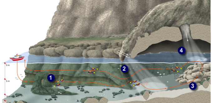 Immersione alla Grotta dell'Olio e cunicoli - Capo Gallo.